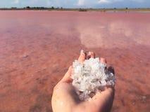 Zakończenie w górę Himalajskich menchii soli kryształ w naturalnym tle fotografia stock