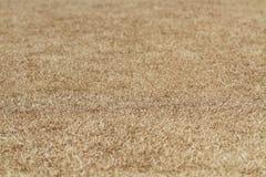 Zakończenia brązu gospodarstwa rolnego pusta wysuszona trawa dla cukiernianej restauraci, webpage, obrazek ramy reklamy mapy desk Zdjęcia Stock
