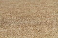 Zakończenia brązu gospodarstwa rolnego pusta wysuszona trawa dla cukiernianej restauraci, webpage, obrazek ramy reklamy mapy desk Obraz Stock