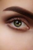 Zakończenia makro- piękny żeński oko z perfect kształt brwiami Czysta skóra, fasonuje naturalnego dymiącego makijaż Dobry wzrok zdjęcie stock