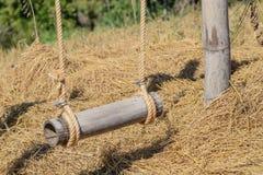 Zakończenia pusty drewniany huśtawkowy obwieszenie od wielkiego drzewa Fotografia Stock