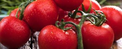 Zakończenie świezi, dojrzali pomidory na drewnianym tle, obraz royalty free