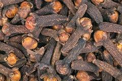 Zakończenie aromatyczni leczniczy cloves jako dekoracyjny tło Syzygium aromaticum Zdjęcia Stock