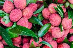 Zakończenie czerwone świeże Lychee owoc Obrazy Royalty Free