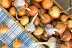 Zakończenie czosnku organicznie cebulkowe żarówki Fotografia Stock