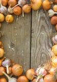 Zakończenie czosnku organicznie cebulkowe żarówki Obrazy Stock