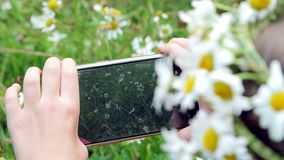 Zakończenie, dziewczyna trzyma telefon, wisząca ozdoba, brać obrazki one, bierze fotografie rumianku gazon zdjęcie wideo