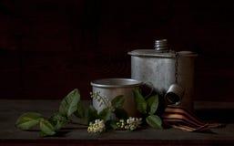 Zakończenie fotografia gałąź wiśni, faborku i metalu kubek, Vict Zdjęcie Stock