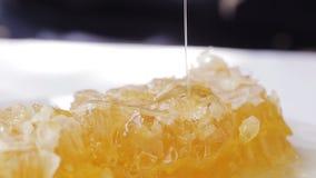 Zakończenie honeycomb na talerzu zbiory