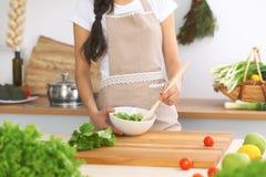 Zakończenie istota ludzka wręcza kulinarnej warzywo sałatki w kuchni Zdrowy posiłku i jarosza pojęcie zdjęcie stock