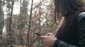 Zakończenie kobiety ` s Up Wręcza Używać Smartphone W jesień parku Dziewczyny odprowadzenie W lesie W spadku, stylu życia pojęcie zdjęcie wideo
