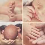Zakończenie kolaż, nowonarodzony dziecko, części ciała Obraz Stock