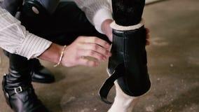 Zakończenie: mężczyzna stawia ochrona buty na koniu zdjęcie wideo