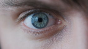 Zakończenie Męski ` s oko Uczeń zwęża się w zwolnionym tempie zbiory wideo