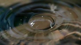 Zakończenie makro- wodna opadowa kropelka fotografia royalty free