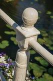 Zakończenie malujący bielu żelaza poręcz na kanale z nadwodnymi roślinami w słonecznym dniu przy Weesp Obraz Stock