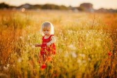 Zakończenie malutcy dziecko cieki fotografia stock