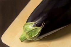Zakończenie oberżyna, aubergine na tnącej desce na ciemnym tle zdjęcie stock