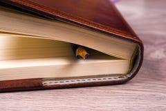 Zakończenie otwarta książka i pióro Obraz Stock