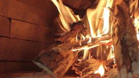 Zakończenie płomień płonący brzozy drewno w pu zbiory wideo