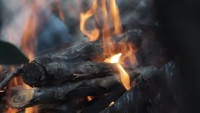 Zakończenie płonący drewniany plenerowy zbiory wideo