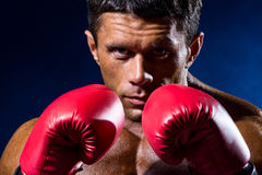 Zakończenie portret bokser w czerwonych bokserskich rękawiczkach Obraz Royalty Free