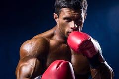 Zakończenie portret bokser w czerwonych bokserskich rękawiczkach na zmroku - błękitny b Obrazy Royalty Free