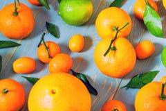 Zakończenie różnorodne cytrus owoc Odgórny widok fotografia stock