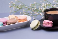 Zakończenie ranku czerni filiżanka kawy z mlekiem, tortowym macaron i kwiatem na błękita stole, piękny deser fotografia royalty free