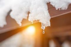 Zakończenie roztapiający śnieżni sople na dachu spadać kropli woda już target1204_1_ mieć hibernaci lodowego jeziora nie rośliien Obrazy Royalty Free