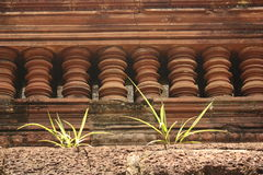 Zakończenie sekcja Kambodżański zabytek z roślinami r na nim Obraz Royalty Free