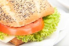 Zakończenie serowa kanapka Obraz Stock