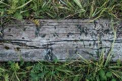 Zakończenie Stara drewniana deska przeciw tłu greenery tam, jest mnóstwo liśćmi trawa, na lato wiośnie Zdjęcia Stock