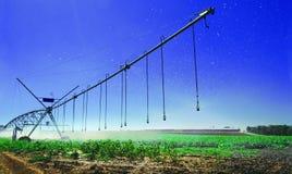 Zakończenie system irygacyjny, glebowy nakrapianie dla roślina przyrosta i uzyskiwać wielkiego fedrunek, zdjęcia royalty free