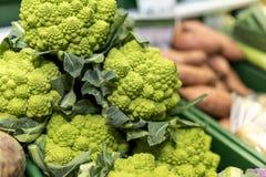 Zakończenie up dojrzali i wibrujący zieleni Romanesco warzywa na mącącym Obrazy Royalty Free