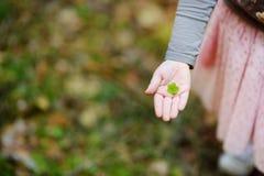 Zakończenie up dziecka ` s ręka trzyma drewnianego kobylaka liść fotografia royalty free