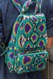 Zakończenie up elegancki luksusowy snakeskin pytonu backback na kobieta plecy, rzadki widok fotografia stock
