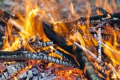 Zakończenie up gorącego palenie ogienia drewniany węgiel Obraz Stock