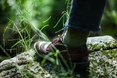 Zakończenie up na galanteryjnym bucie w lesie zdjęcia royalty free