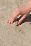 Zakończenie up na ręce z czerwonym manicure'em znajduje seashell na piaskowatej plaży Zdjęcia Stock