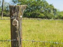Zakończenie up szczegół gospodarstwa rolnego ogrodzenia poczta z drutu kolczastego i trawy tłem obraz stock
