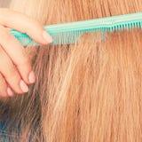 Zakończenie up zieleni grępla w czerwonym włosy Fotografia Stock