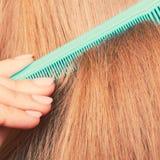 Zakończenie up zieleni grępla w czerwonym włosy Zdjęcia Royalty Free