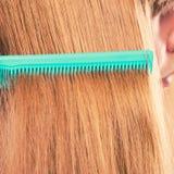 Zakończenie up zieleni grępla w czerwonym włosy Obraz Royalty Free