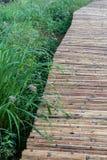Zakończenie w górę bambusa mostu z świrzepy trawą zdjęcia royalty free