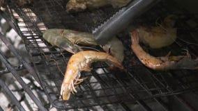 Zakończenie w górę garneli na grilla grillu podczas gdy pinkin Garnela grilla mięso na grillu na ogieniu i węglu Plenerowy pinkin zbiory wideo