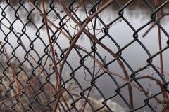 Zakończenie w górę metalu ogrodzenia z tylną kroplą woda fotografia stock
