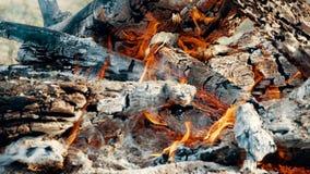 Zakończenie w górę ognisko płomieni campingu ogień, zwolnione tempo płonąca łupka zdjęcie wideo