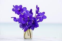 Zakończenie w górę pięknego bukieta orchidee kwitnie na drewnianym stołowym pobliskim morzu Tajlandia Obraz Royalty Free