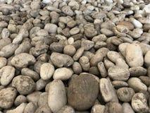 Zakończenie w górę szarego dennego zdroju kamienia otoczaka dla tła obraz stock